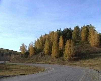 Дорога в Бердяуш